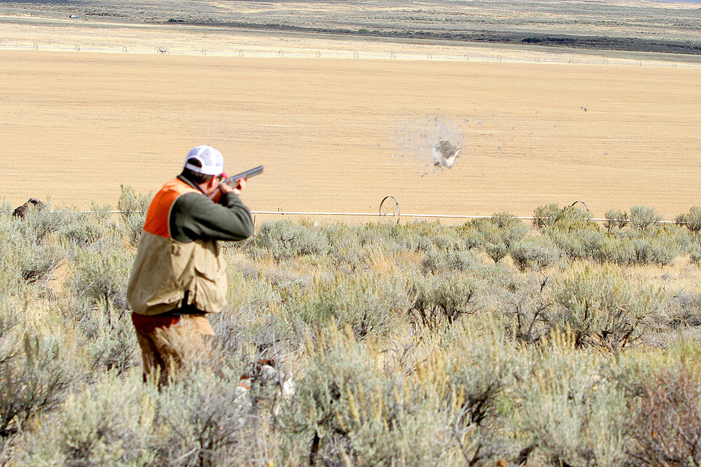 Hunt southern idaho western spirit ranches world class for Idaho out of state fishing license